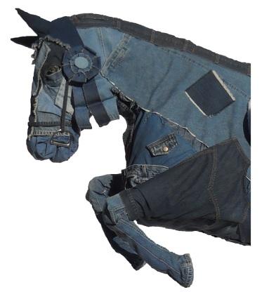 Blue Jean Jumper head.jpg